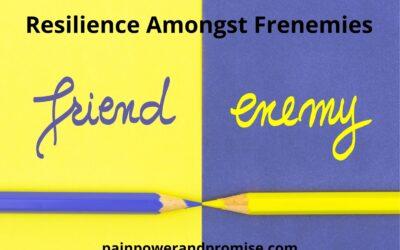 Resilience Amongst Frenemies